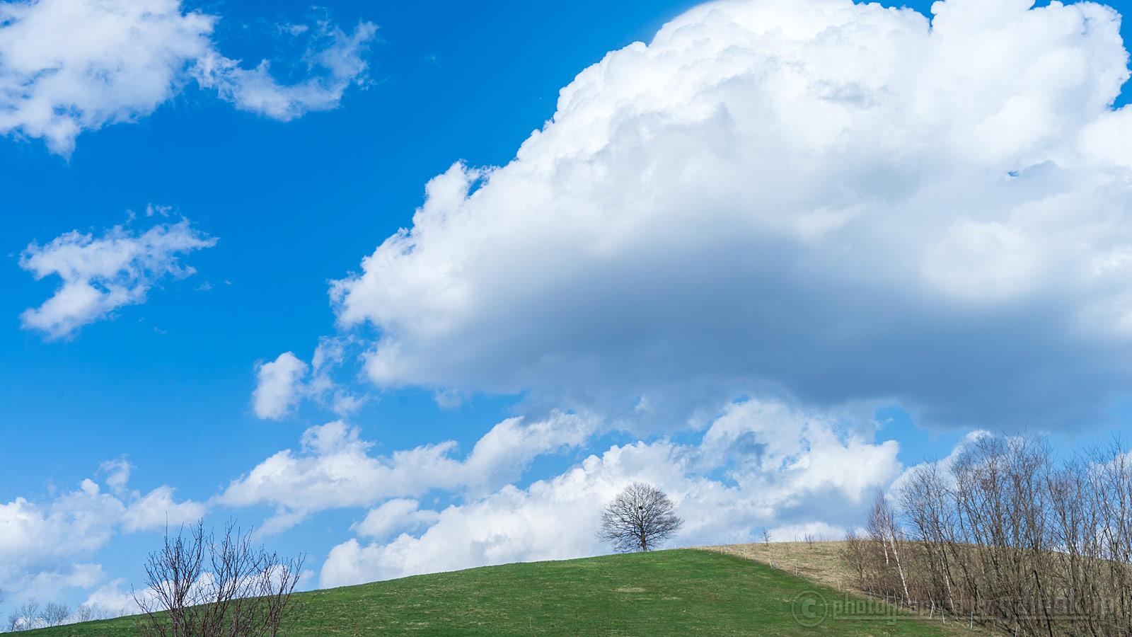 ゆっくり時間を満喫♪4月の春の美瑛(びえい)