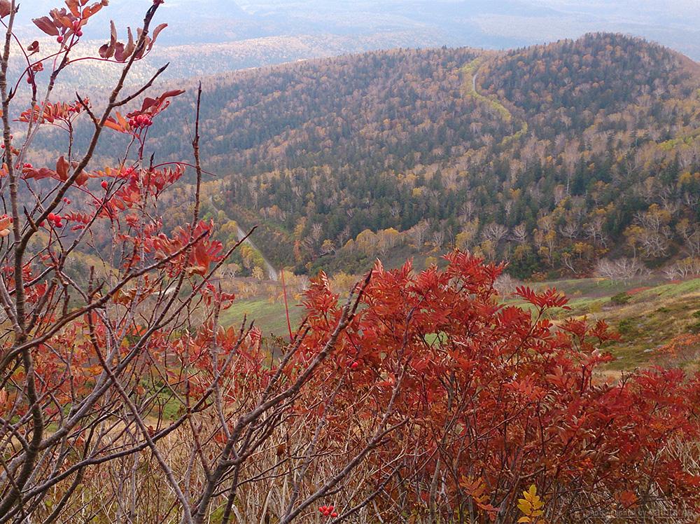 9月の紅葉時期は山で渋滞!?大雪山(赤岳銀泉台)のトレッキング登山