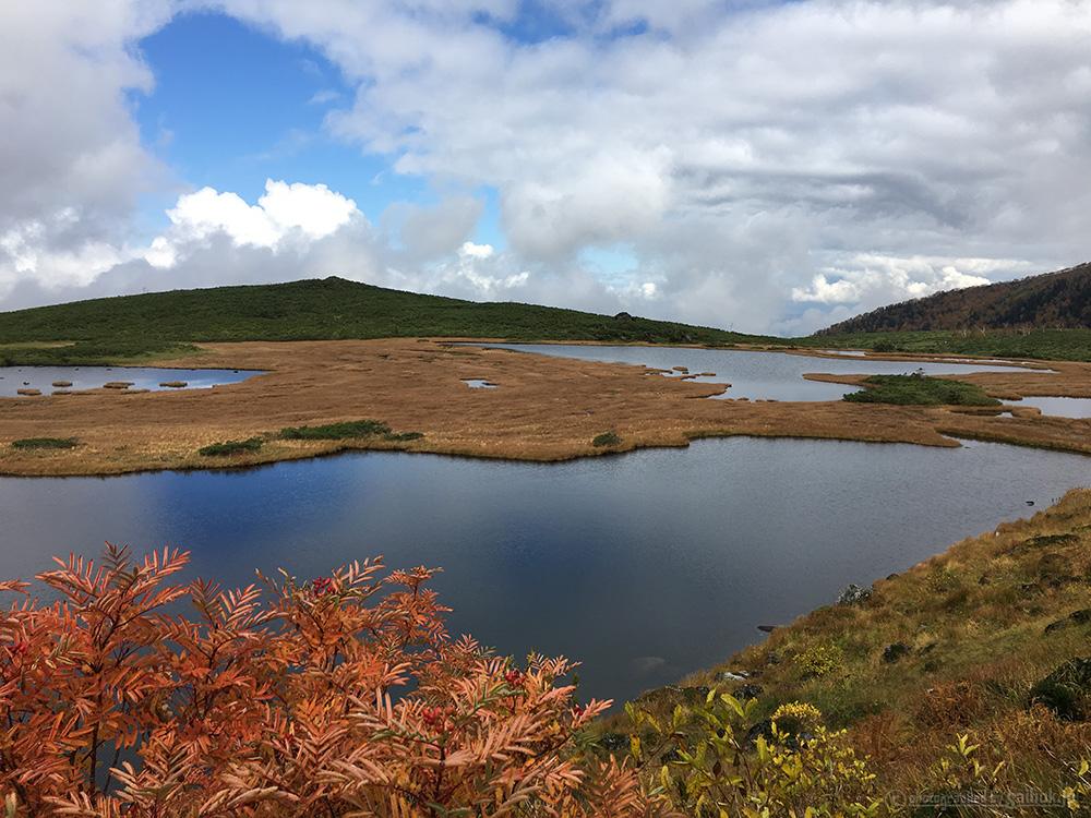 大雪山の紅葉登山・ハイキング(愛山渓温泉~沼の平)