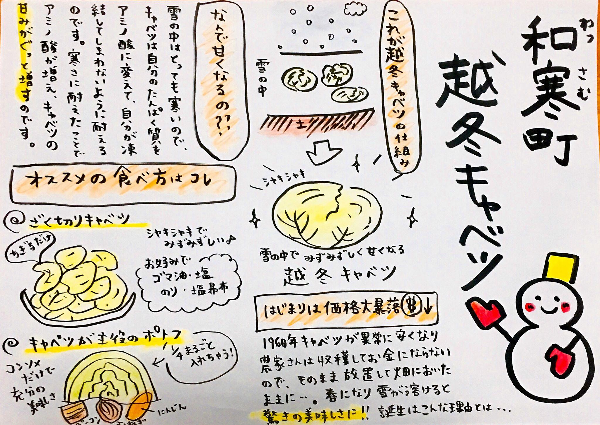 越冬キャベツを美味しくお召し上がりいただくために(保存・食べ方レシピ)