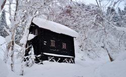 北海道のあるある「雪庇落とし」と「ホッカイ棒」
